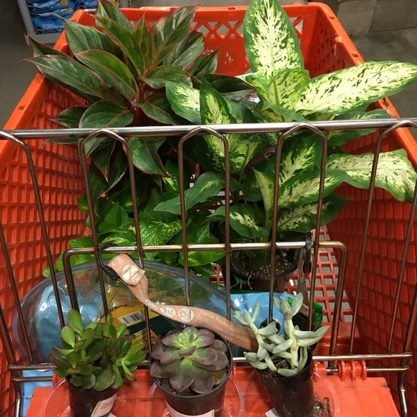 Photo Taken At The Home Depot By Reena A On 1 17 2016