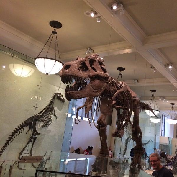 Photo taken at David H. Koch Dinosaur Wing by Taner O. on 7/5/2017