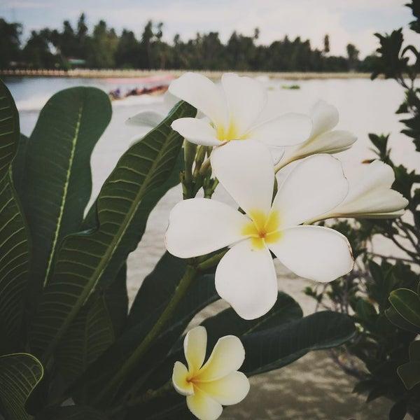 Photo taken at Baan Chom View by Neramit S. on 7/25/2015