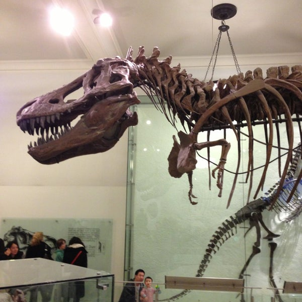 Photo taken at David H. Koch Dinosaur Wing by Michael B. on 2/18/2013