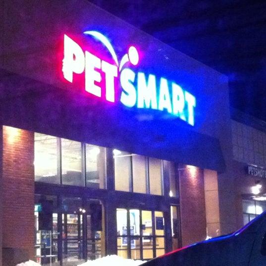 Petsmart Dog Hotel Toronto