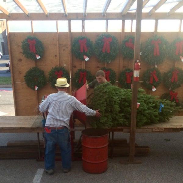 Chesterfield Lions Club Christmas Tree Lot Four Seasons