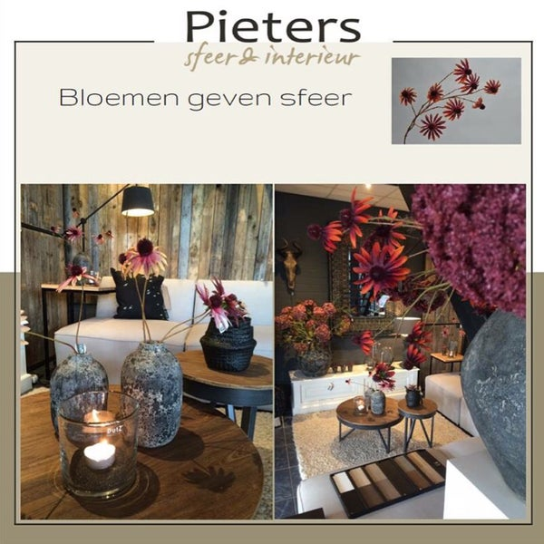 photo taken at pieters sfeer en interieur by kittie v on 115