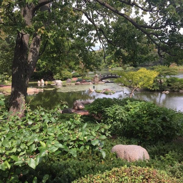 Photos at Osaka Garden - Garden