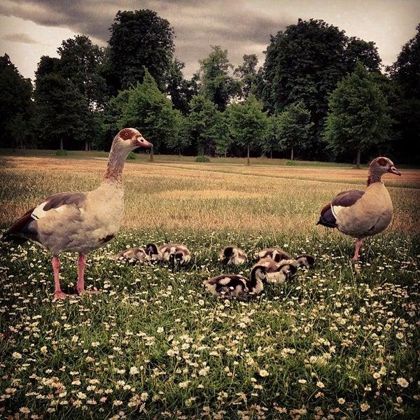 Photo taken at Kensington Gardens by duda b. on 7/4/2013