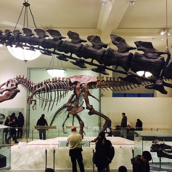 Photo taken at David H. Koch Dinosaur Wing by Leslie C. on 1/14/2017