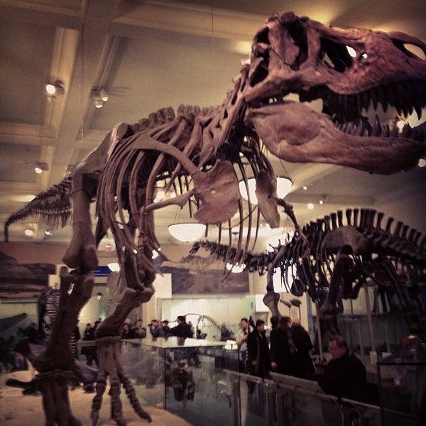Photo taken at David H. Koch Dinosaur Wing by Handerson N. on 1/3/2013