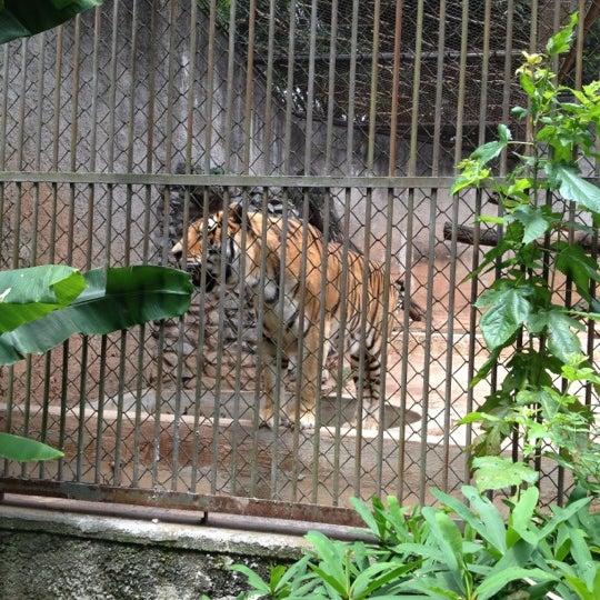 Photo taken at Parque das Hortênsias by Marcelo R. on 11/25/2012