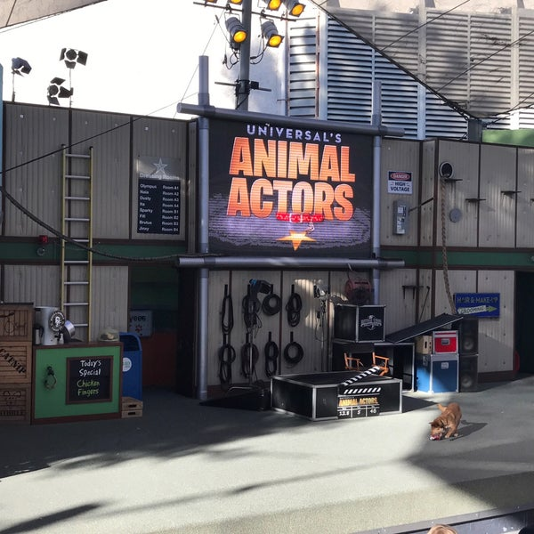 Photo taken at Universal's Animal Actors by Manuel C. on 2/4/2017