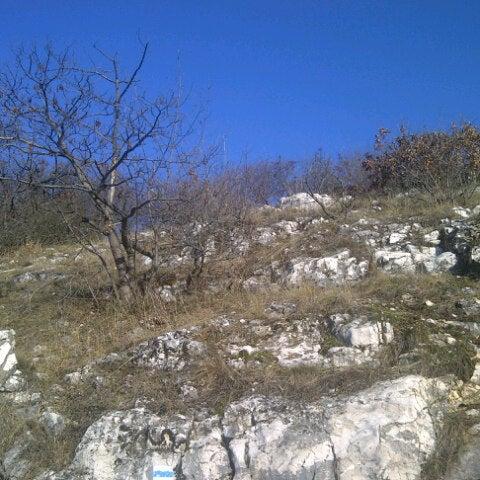 12/31/2012 tarihinde Andrea K.ziyaretçi tarafından Nagy-Kevély'de çekilen fotoğraf