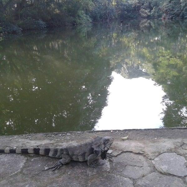 Photo taken at Parque das Hortênsias by Adilio S. on 5/3/2014