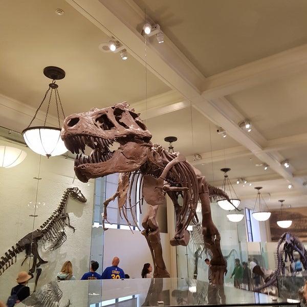 Photo taken at David H. Koch Dinosaur Wing by Radka F. on 6/4/2017