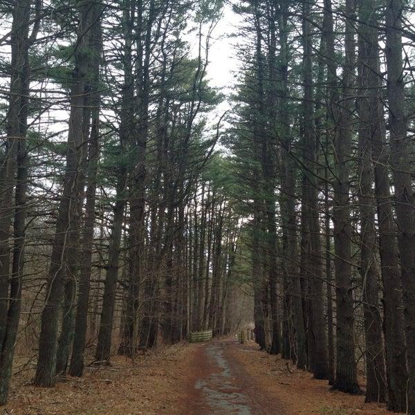 Photo taken at Croton Gorge Park by Daniel on 1/12/2014