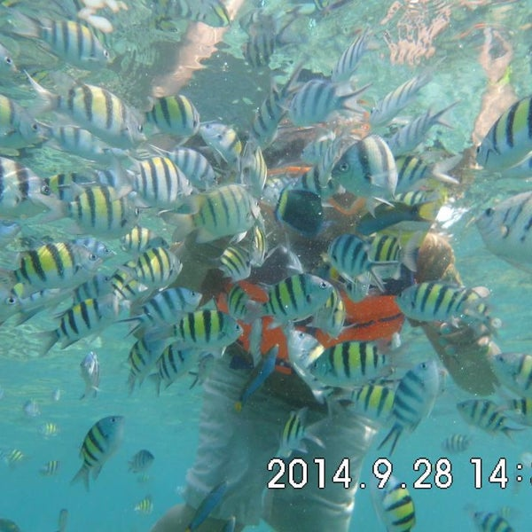 Photo taken at Pulau Pramuka by Tour And Travel P. on 11/22/2014