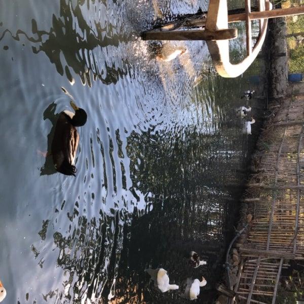 10/22/2017 tarihinde Fatma K.ziyaretçi tarafından Nar Danesi'de çekilen fotoğraf