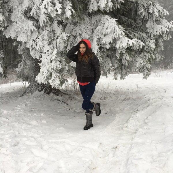 12/1/2015에 Marilena S.님이 Cabana Gârbova에서 찍은 사진