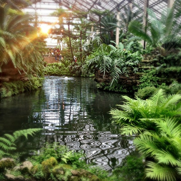 Photo taken at Garfield Park Conservatory by Silvana F. on 4/20/2013