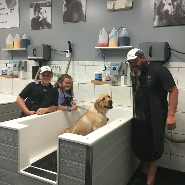 Dirty dogs self service dog wash guilford hills 19 visitors solutioingenieria Choice Image