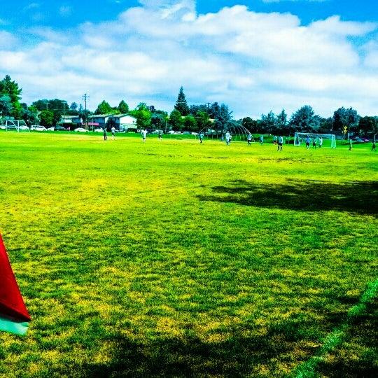 Palo Alto Dog Park