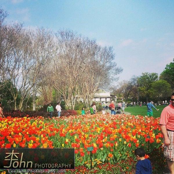 Foto tirada no(a) Dallas Arboretum and Botanical Garden por John L. em 3/17/2013
