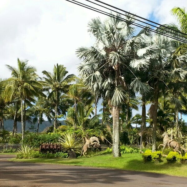 Photo Taken At Kauai Nursery And Landscape By Ernie E On 6 25
