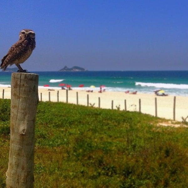 Photo taken at Praia da Barra da Tijuca by Ale v. on 2/21/2013