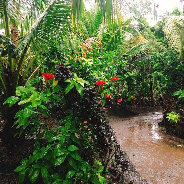 Photo taken at Coconut Island by masanori k. on 9/11/2016