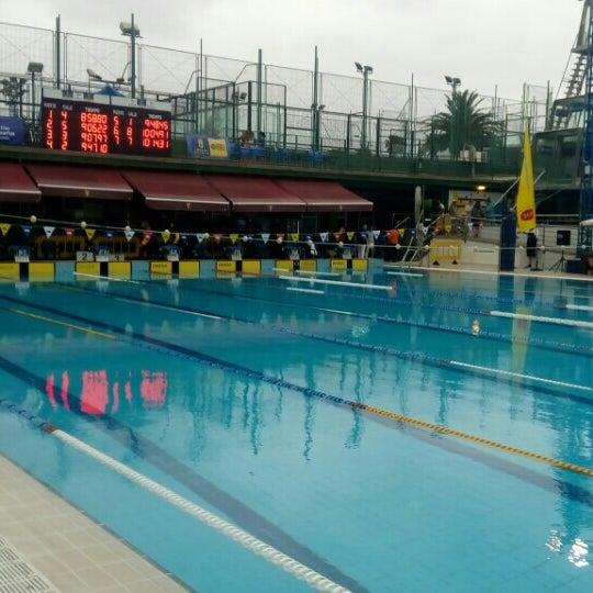 Piscina julio navarro club nataci n las palmas piscina for Piscina julio navarro