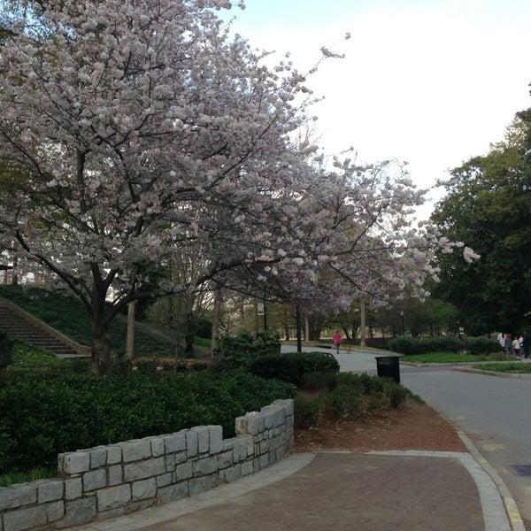 รูปภาพถ่ายที่ Piedmont Park โดย Anthony R. เมื่อ 4/8/2013