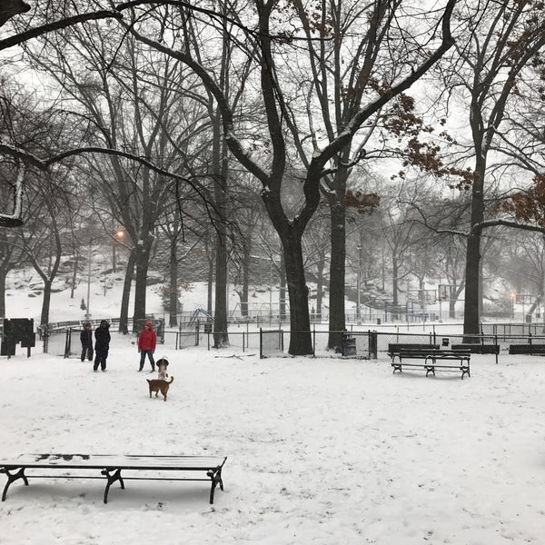 Photo taken at Marcus Garvey Park - Dog Run by Lauren D. on 1/7/2017