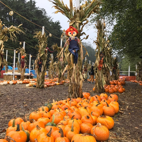Photo taken at Clancy's Pumpkin Patch by Bella Y. on 10/16/2016