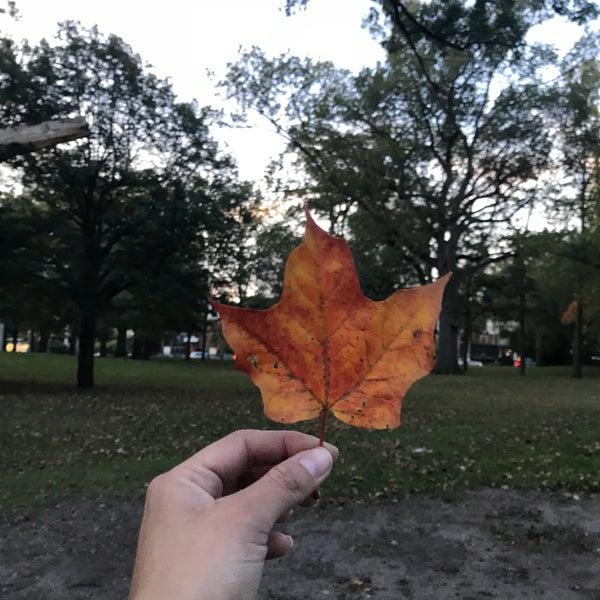 10/19/2017 tarihinde Jocelyn V.ziyaretçi tarafından High Park'de çekilen fotoğraf