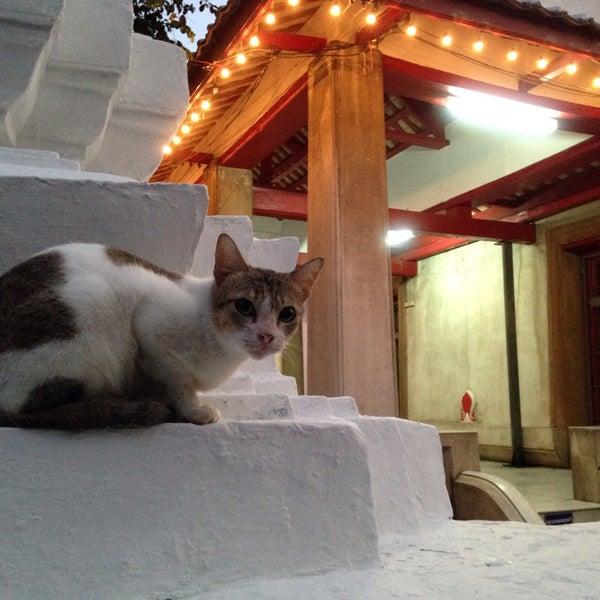 Photo taken at วัดหิรัญรูจีวรวิหาร (วัดน้อย) Wat Hiran Ruchi Worawihan (Wat Noi) by นับหนึ่ง น. on 12/6/2015