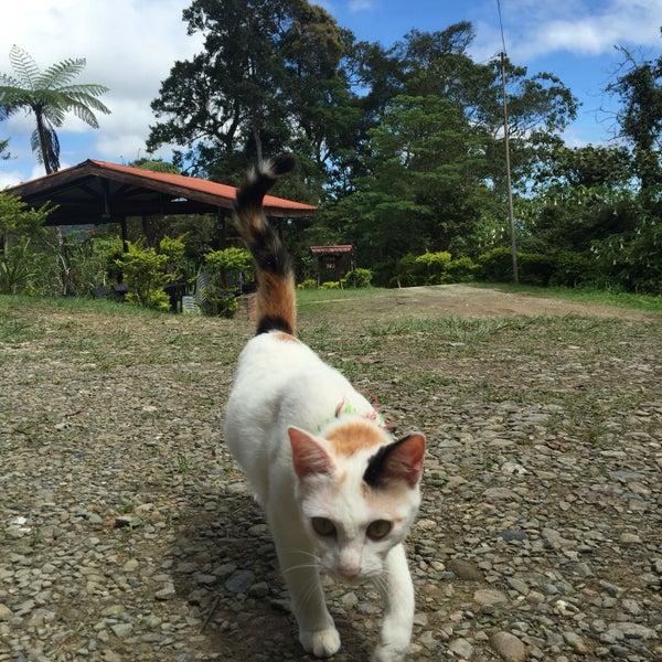 Photo taken at Kinabalu Mountain Lodge by Najwa 7. on 5/29/2016