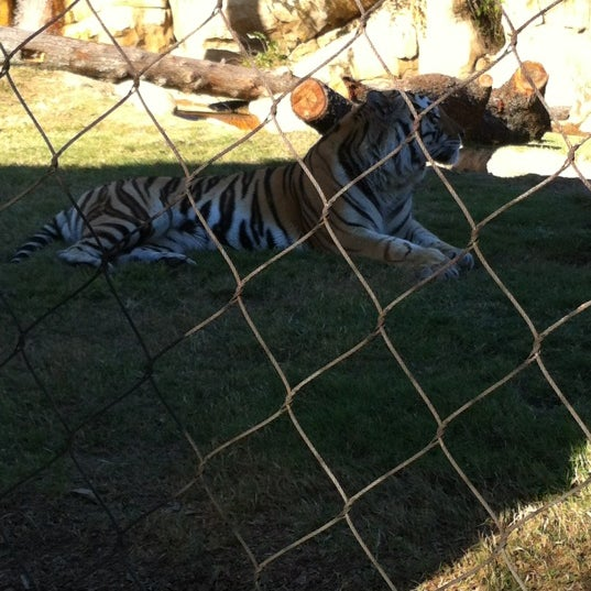 Photo taken at LSU - Mike's Habitat by Bee M. on 11/8/2012