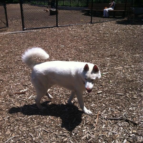 Photo taken at Cunningham Park Dog Run by Jong on 6/2/2013