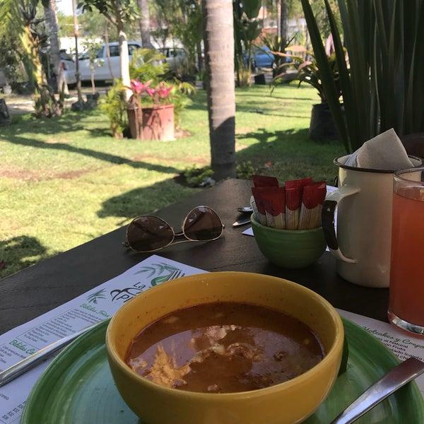 La planter a vivero caf caf en tlajomulco de z iga for Vivero de cafe pdf