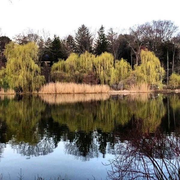 5/1/2015 tarihinde Robert K.ziyaretçi tarafından High Park'de çekilen fotoğraf