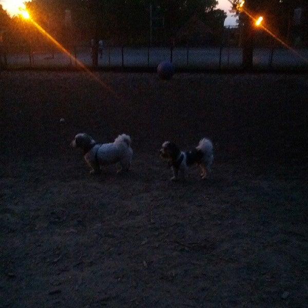 Photo taken at Cunningham Park Dog Run by Jon S. on 8/7/2013
