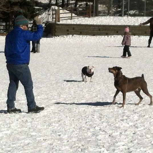 รูปภาพถ่ายที่ Carter Dog Park โดย Brandi B. เมื่อ 12/30/2012
