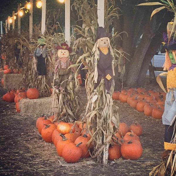 Photo taken at Clancy's Pumpkin Patch by Quang N. on 10/13/2014