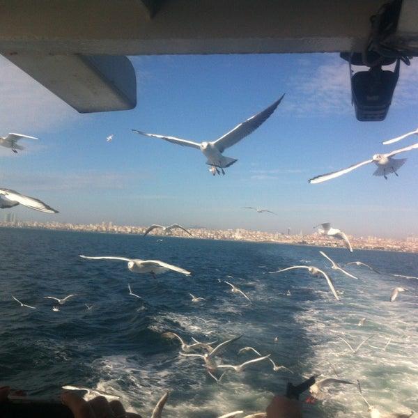 Photo taken at Büyükada Mavi Marmara Motor İskelesi by Alexander Z. on 1/20/2013