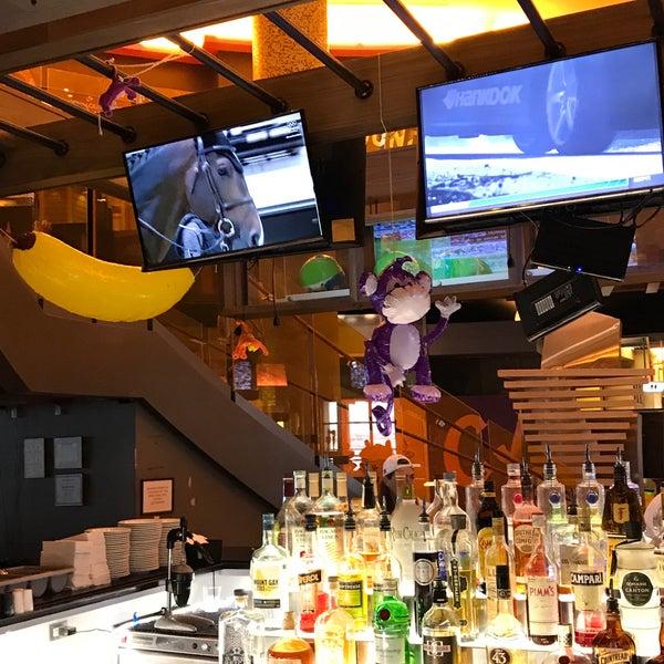 monkey bar speed dating Dating in hamburg 1 abend, 3 bars, 18 leute 1,5h pro bar, kein speeddating, ein 6er-tisch pro bar keine 1 zu 1 situationen nur 15,90 eur pro person.