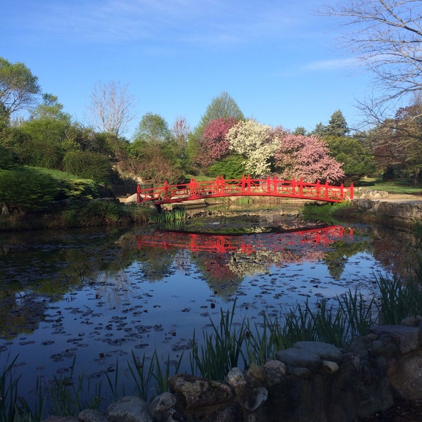 Atlanta Botanical Garden Storza Woods: Botanical Gardens: Lake Of The Woods