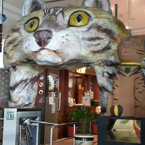 Photo taken at Muzium Kucing (Cat Museum) by F N K. on 8/26/2017