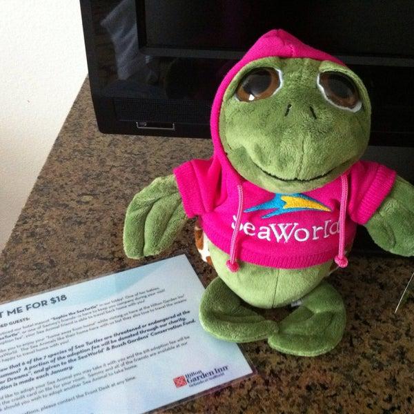 Photos at Hilton Garden Inn Orlando at SeaWorld - Westwood - Orlando, FL