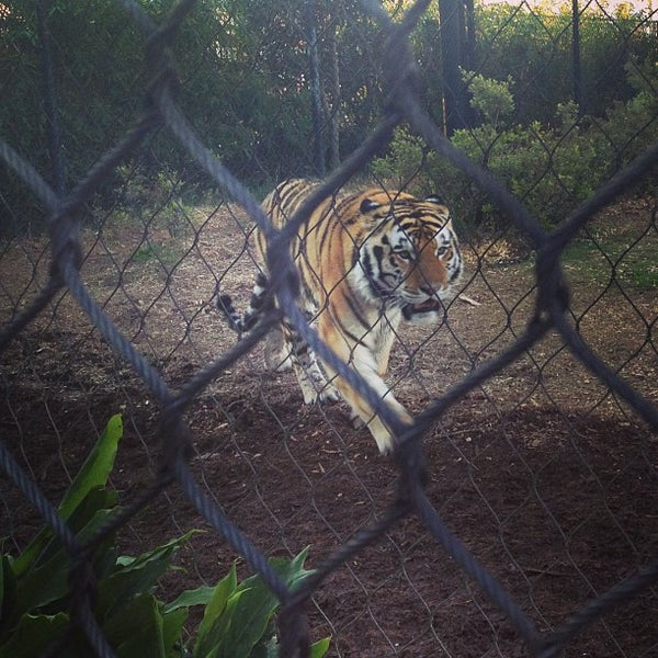 Photo taken at LSU - Mike's Habitat by Celal G. on 3/4/2013