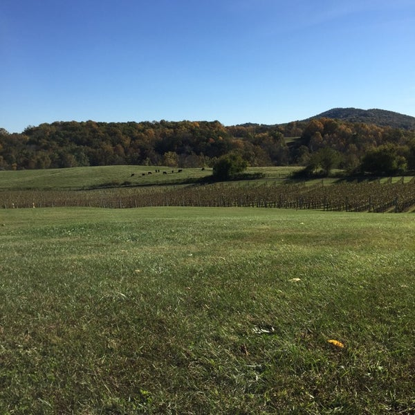 Photo taken at Three Fox Vineyards by Alexandra M. on 10/19/2014
