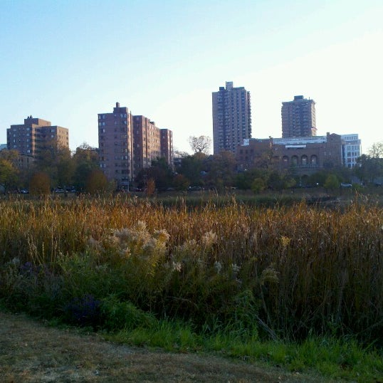 Photo taken at Loring Park by Otto D. on 10/16/2012
