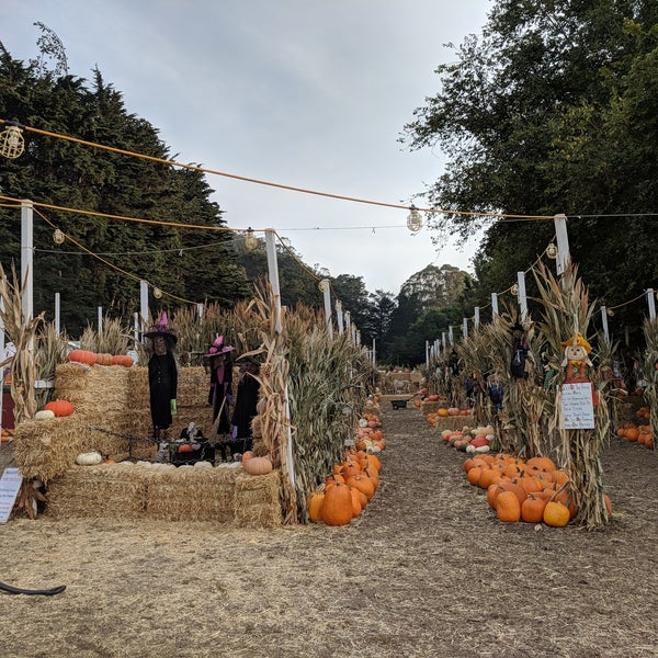 Photo taken at Clancy's Pumpkin Patch by Aileen A. on 10/11/2017